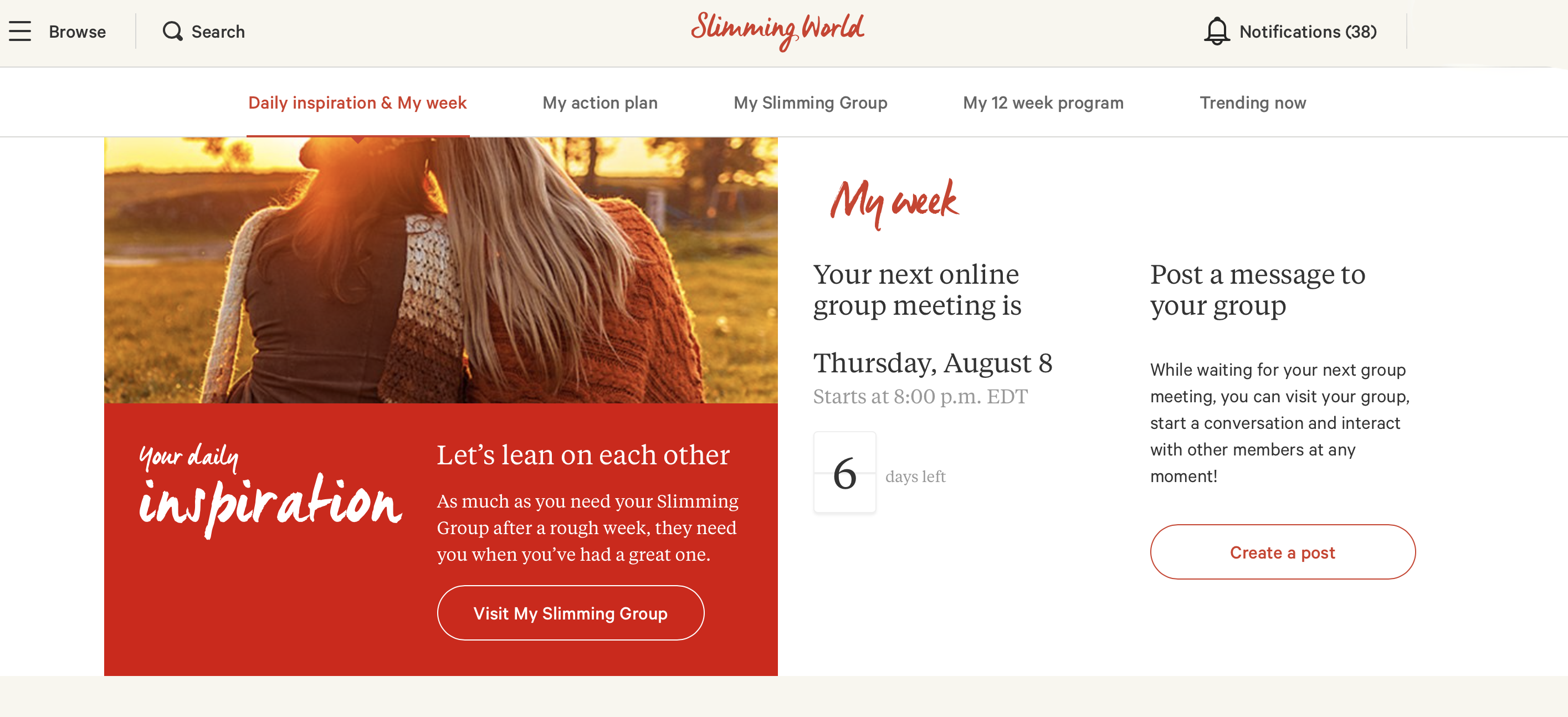Members screen for Slimming World USA website