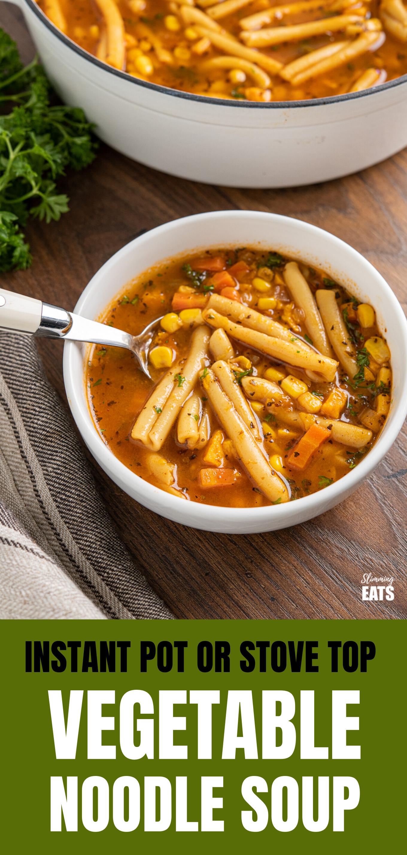 Instant Pot Vegetable Noodle Soup featured pin