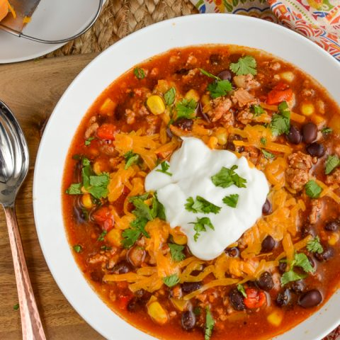 Syn Free Instant Pot Turkey Taco Soup