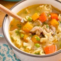 Syn Free Chicken Vegetable Pasta Soup