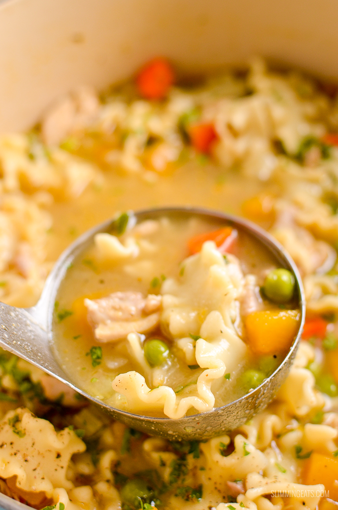 ladle of Chicken Vegetable Pasta Soup