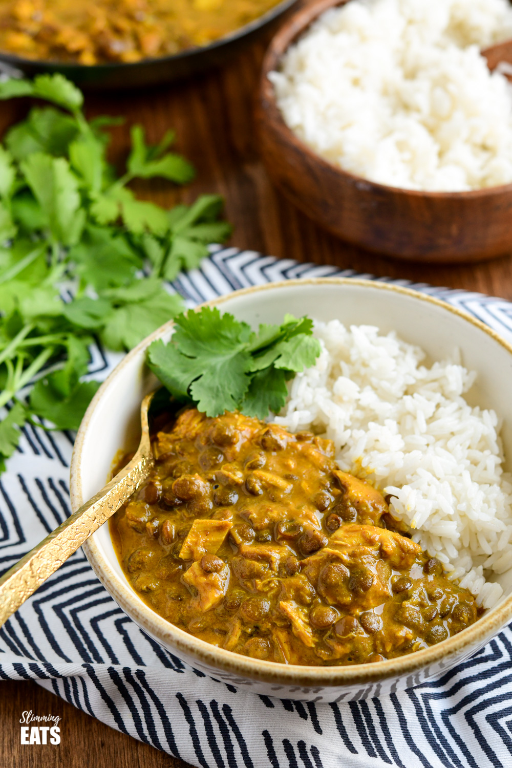 coconut chicken and lentil curry in a cream and white bowl with white rice and coriander