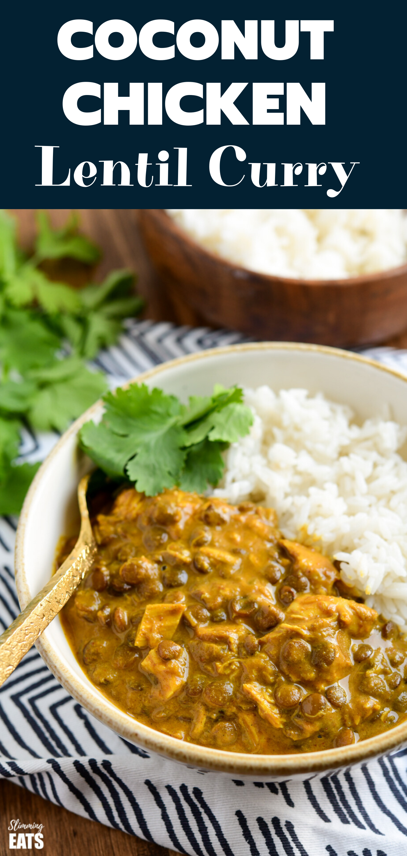 coconut chicken curry and lentil curry feature pin image