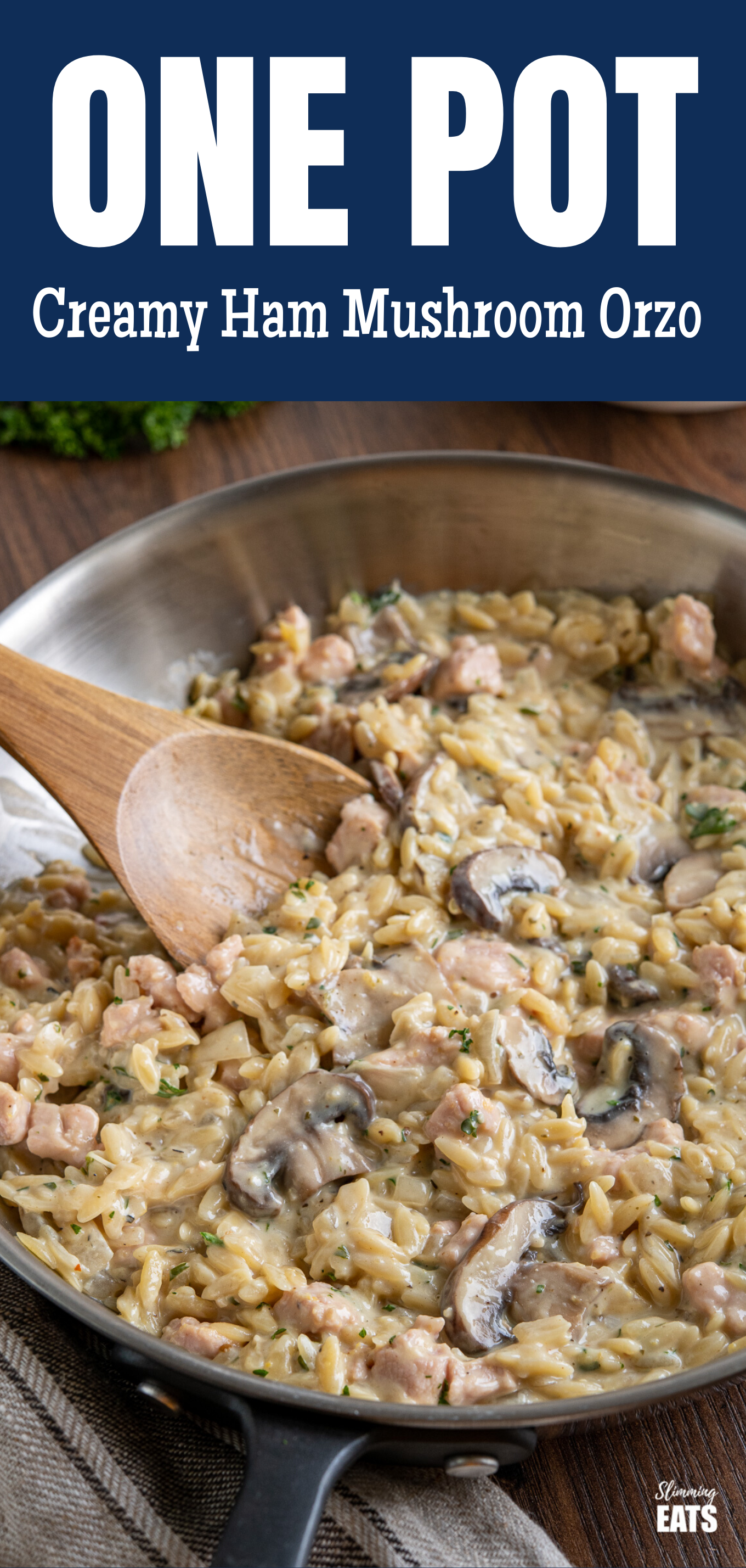 One Pot Creamy Ham and Orzo featured pin image
