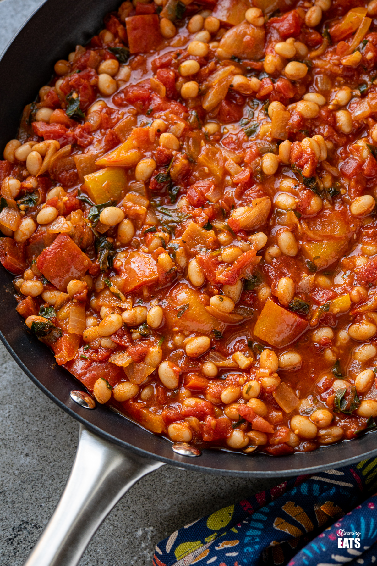 close up of Tomatoes and White Beans in a black frying pan